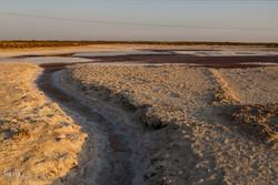 خروجی آب کارون از سد گتوند عمدا کاهش یافت/ افزایش شوری آب در مارد