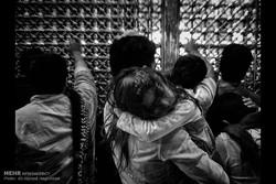بالصور: ليالي ضريح الإمام الرضا (ع)