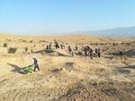 کشف سفال های دوران های تاریخی و اسلامی در تپه برهما در لرستان