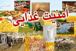 دستاوردهای مطلوب اجرای پروژه «ایکاردا» برای حوزه کشاورزی لرستان
