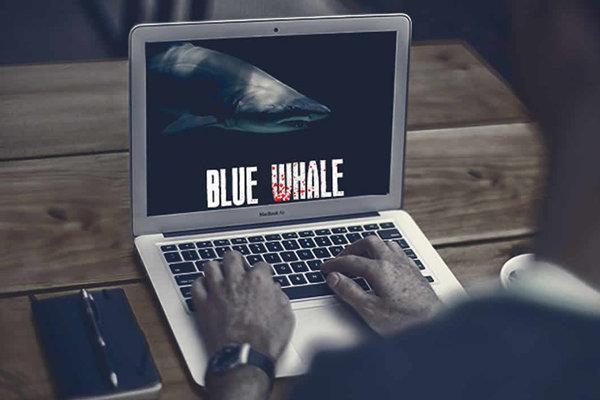 چگونه وارد بازی «نهنگ آبی» شدیم/ هزینههای یک گاف رسانهای!