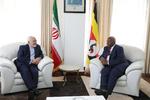ظريف: احدى اولويات البلاد التركيز على تطوير التعاون الاقتصادي مع الدول الافريقية