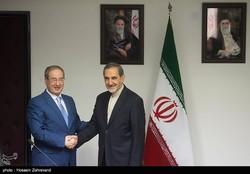 Faisal al-Mekdad made the remarks at a Wednesday meeting in Tehran with Ali Akbar Velayati
