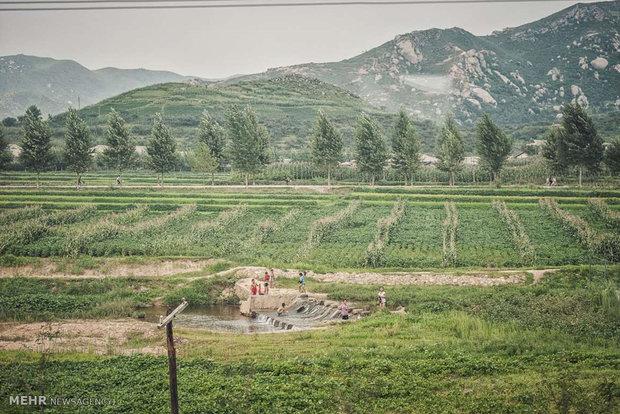 Kuzey Kore'deki gündelik yaşamdan kareler