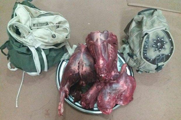 هشدار به متخلفین شکار/ تشخیص گوشت حیات وحش با آزمایشهای ژنتیک