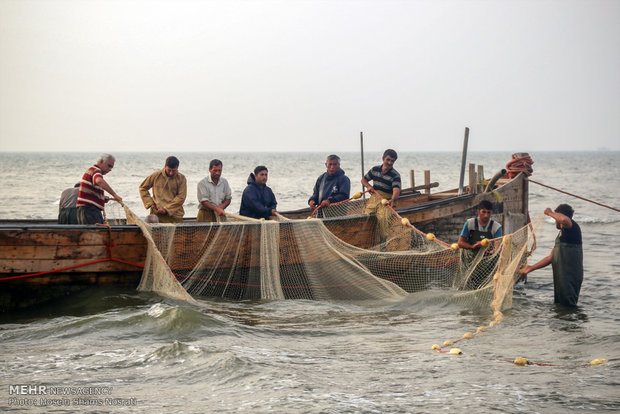 Fishing season in Gilan
