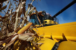 کشاورزان آمریکایی ۵ میلیارد دلار کمکهزینه دریافت کردند