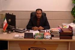 حسین سعد الدین - کراپشده