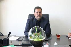 موافقت شورای شهر قدس با واگذاری ۵ قطعه زمین برای ساخت مدرسه