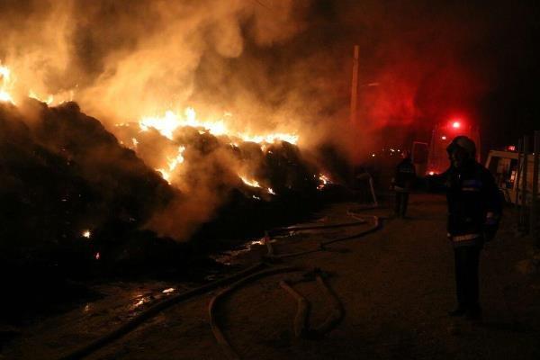 آتش سوزی علوفه