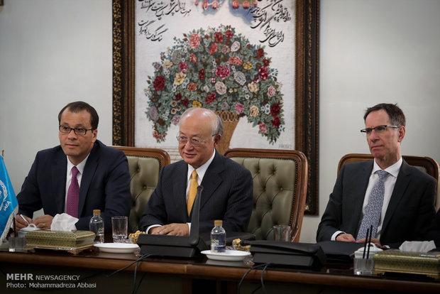 IAEA chief in Tehran