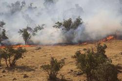 آتش در اراضی ملی و منابع طبیعی طارم استان قزوین مهار شد