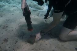 این ابزار برقی زیر آب کار می کنند!