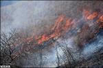 وزش باد مهار آتش در ۵ نقطه گلستان را به تعویق انداخته است