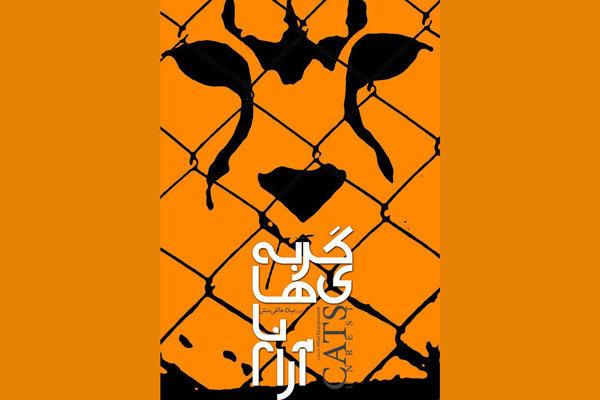 «گربههای ناآرام» به گربه سانان ایرانی می پردازد/ پلنگ ها می آیند