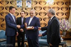 دیدار وزیر انرژی روسیه با وزیر اقتصاد ایران