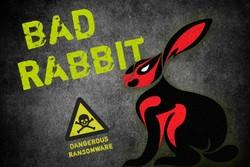 جزئیات انتشار باج گیر سایبری «خرگوش بد»/ کشورهای قربانی باج افزار