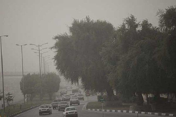 گرد و غبار در آسمان استان بوشهر/ سرعت وزش باد از فردا کم میشود,