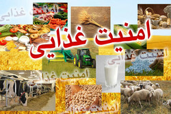 پیشنهاد تشکیل سازمان توسعه تجارت کشاورزی به کمیسیون ارجاع شد