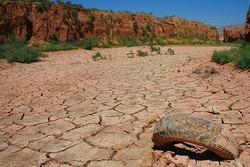 خشکسالی گریبان محیط زیست اردبیل را گرفت/ تخریب تدریجی زیستگاهها