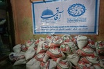 Iranian donors to Rohingya Muslims to be appreciated on Wed.