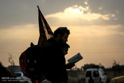 عشاق الحسين في طريق النجف متوجهين نحو كربلاء / صور
