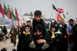 پیادهروی زائران حسینی از نجف تا کربلا - 6
