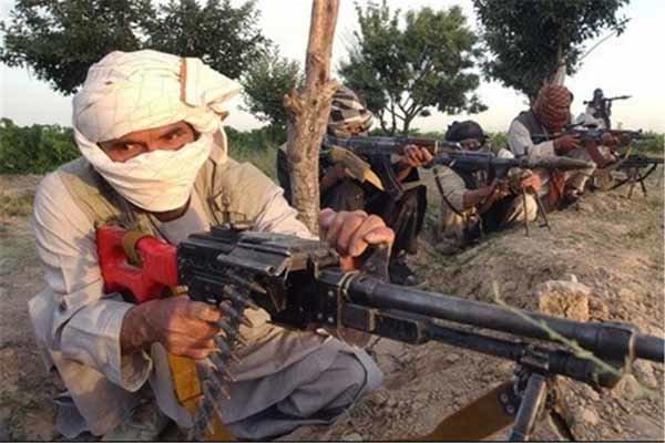 افغانستان میں طالبان کا جرمن کمانڈر گرفتار/ وہابی دہشت گردوں کی لگام مغربی خفیہ ایجنسیوں کے ہاتھ میں