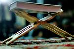 توزیع ۱۰۰۰ جلد قرآن به مناسبت دهه فجر در استان همدان