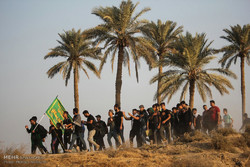 Arbaeen pilgrims walking from Najaf to Karbala
