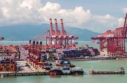اهمیت توجه به استارتاپها در توسعه حمل و نقل دریایی