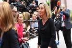 موگرینی: سفارت جمهوری چک به بیت المقدس منتقل نمیشود
