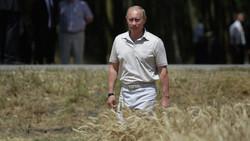 روسیه بزرگ ترین تامین کننده غذای اورگانیک آسیا-اقیانوسیه میشود