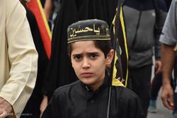 کربلائے معلی میں سید الشہداء کے چہلم میں حسینی بچوں کا حضور