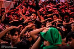 حسینی عاشقوں اور پروانوں کا کربلا میں حضور