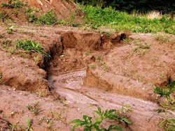 Soil erosion in Iran 2.5 times the world average