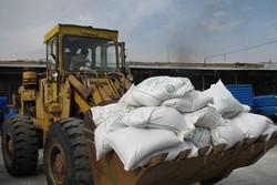 کشاورزان همچنان گرفتار کمبود کود اوره/ وزارت جهاد آمار درستی از میزان نیاز به کود ندارد