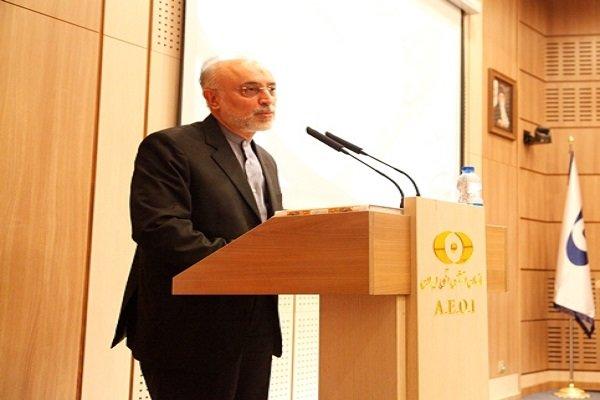 صالحي: آية الله هاشمي رفسنجاني كان من الداعمين لمشروع إيران النووي السلمي