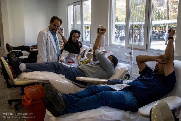 اهدای خون, بشیر حاجی بیگی, سازمان انتقال خون ایران