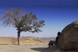 فیلم «پیژامه راه راه پدر»