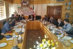 ۵۸۰ نفر در طرح کارورزی استان سمنان ثبتنام کردند