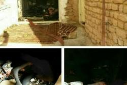 آتشسوزی منزل مسکونی در روستای الله وردیخان یک کشته برجای گذاشت