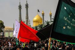 قم سیاهپوش صادق آل محمد(ص) شد/ عزاداری مراجع تقلید