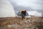 ۱۴۰۰ کانکس برای زلزله زدگان تدارک دیده شده است