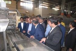 سرمایهگذاری در بخش کشاورزی استان بوشهر حمایت میشود
