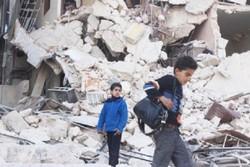 مستند گریههایی از سوریه
