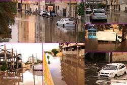 بارش باران و تکرار مشکلات در بوشهر/ آبگرفتگی معابر و تعطیلی مدارس