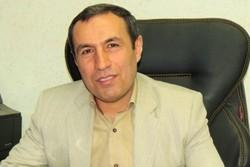 صادق عباسی شاهکوه مدیرعامل شرکت ارتباطات زیرساخت