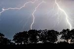 پاکستان کے علاقہ تھر میں آسمانی بجلی گرنے سے 8 افراد ہلاک