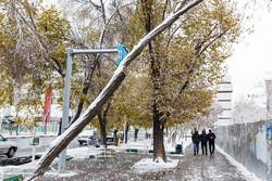 تعطیلی برخی از کلاسهای دانشگاه های استان آذربایجان شرقی